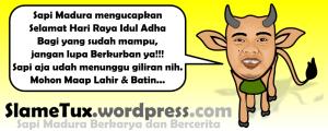 Sapi Madura mengucapkan Selamat Hari Raya Idul Adha